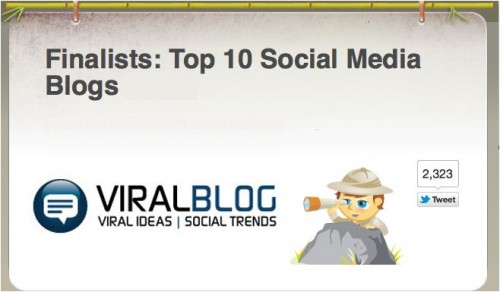 ViralBlog Finalist In Top 10 Social Media Blogs 2013