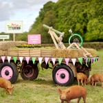 How Mobile & Interactive OOH Are Feeding The Pigs?