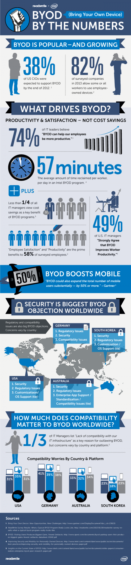 Infographic: BYOD By the Numbers - By Igor Beuker for ViralBlog.com